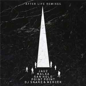 Tchami - After Life Remixes Album